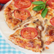 Homemade vegetarian pizza with cheese, tomatoes and mushrooms — Stock Photo #28664899