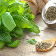 Green basil — Stock Photo #44093685