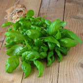 Fresh green basil — 图库照片