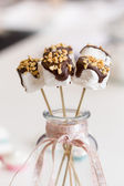 Marshmallows auf stick — Stockfoto