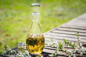 Alcohol home made tincture — Stock Photo