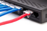 LAN-Netzwerk-switch mit Ethernet-Kabel angeschlossen — Stockfoto