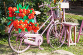 An old pink bike standing on the street — Stock Photo