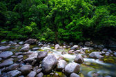 Mossman River Gorge — Stock Photo