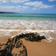 Apollo Bay Beach Victoria — Stock Photo