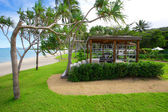 Tropical Tourist Destination Australia — Stock fotografie