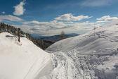Path through the snow — Stock Photo