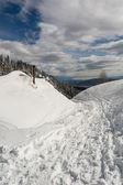 Chemin dans la neige — Photo