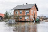 House surrounded with water — Stock Photo