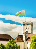 Castle clock tower with a flag  — Foto Stock