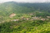 Una città circondata da una foresta sul versante di una montagna — Foto Stock