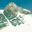 Mountain top with its slope covered in snow — Stock Photo #49056535