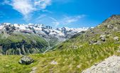 Idyllic view of a mountain valley with snow covered ridge — Stock Photo