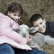 Two kids with a lamb — Stock Photo