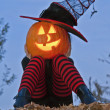 Halloween pumpkin head witch — Stok fotoğraf