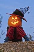 Halloween pumpkin head witch — Stock Photo