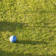 Blue ball with green grass — Stock Photo