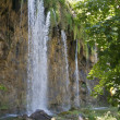 Waterfall in shade — Stock Photo #39935141