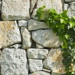 Grey rubble wall — Stock Photo #46293403