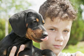 Dachshund puppy with kid — Foto de Stock