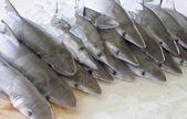Tubarões no mercado de peixe — Foto Stock