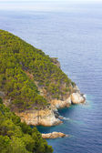 Cliff in Costa Brava — Stock Photo