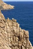 布拉瓦海岸悬崖 — 图库照片