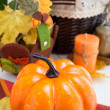 Pumpkin on a table — Stock Photo
