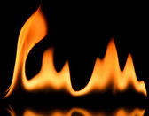 Fire frame — Stockfoto