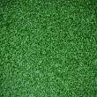 Beautiful deep green grass texture — стоковое фото #27685729