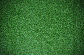 Beautiful deep green grass texture — Stok fotoğraf