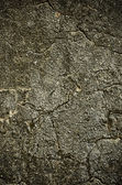 Vintage concrete wall — Stockfoto