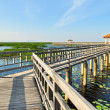Walkway bridge on the lake — Stock Photo
