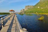 Wood bridge on the lake in national park — Stock Photo