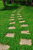 Pathway in a green park — Stock Photo