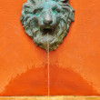 Lion fountain — Stock fotografie #28088351