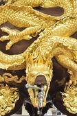Golden dragon tap — Stock Photo
