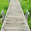 Stock Photo: Wooden path walkway through tropical green field