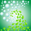 Background with leaves and water drops — Stock Vector
