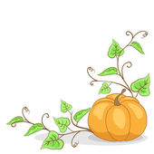 Pumpkin with leaves (Vector) — Stock vektor