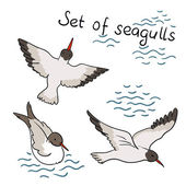 Set of seagulls — Stock Vector