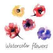 Watercolour  flowers — Stock Vector