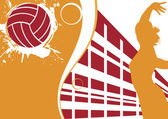 Volleyball banner — Vector de stock