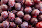 Background from plums — Stock Photo