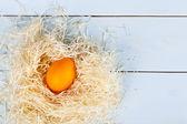 Pasqua backgroud da uova colorate — Foto Stock