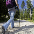 Nordic-walking in mountains — Stock Photo