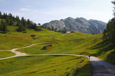 Austria green valley — Stock Photo