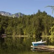 Austria Toplitzsee lake — Stock Photo