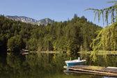Austria Toplitzsee lake — Stock Photo