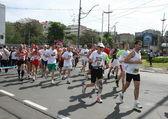 Maratona di belgrado 2014. — Foto Stock